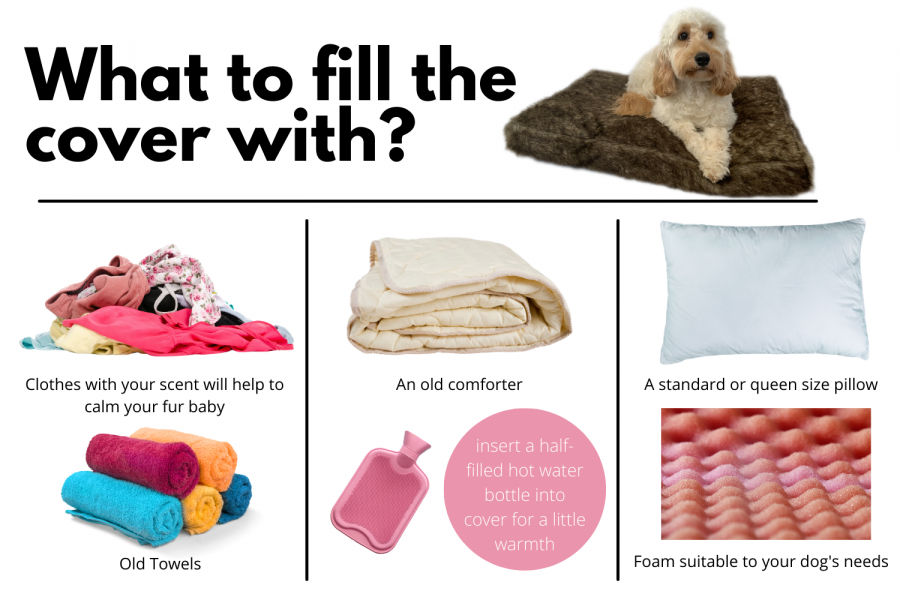 Items to place on your Millie Mats cover so your dog won't have separation anxiety