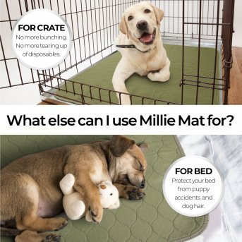 bed or crate liner