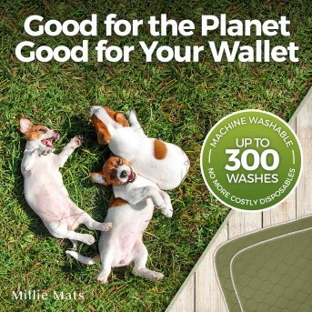 be kind to the planet with reusable puppy pads