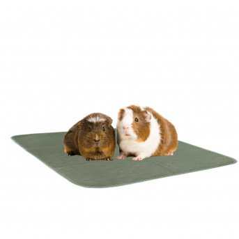 REUSABLE PADS FOR GUINEA PIGS